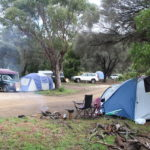 camping mayfield bay swansea tasmania