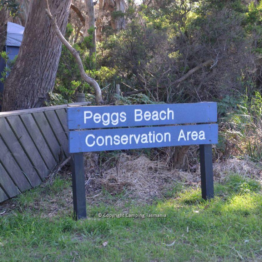 camping peggs beach.jpg