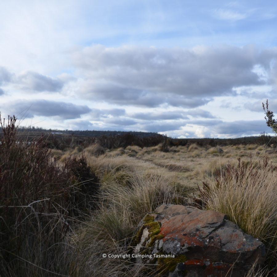 little-pine-lagoon-005.jpg