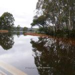 bradys-lake-001.jpg