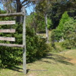 paramatta-creek-006.jpg