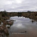 bronte-lagoon-003.jpg