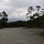 lake-pedder-005.jpg