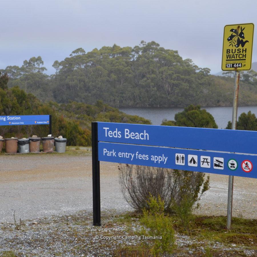 teds-beach-005.jpg