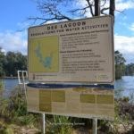 dee-lagoon-002.jpg