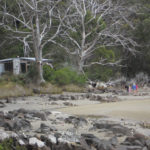 camping cockle creek.jpg