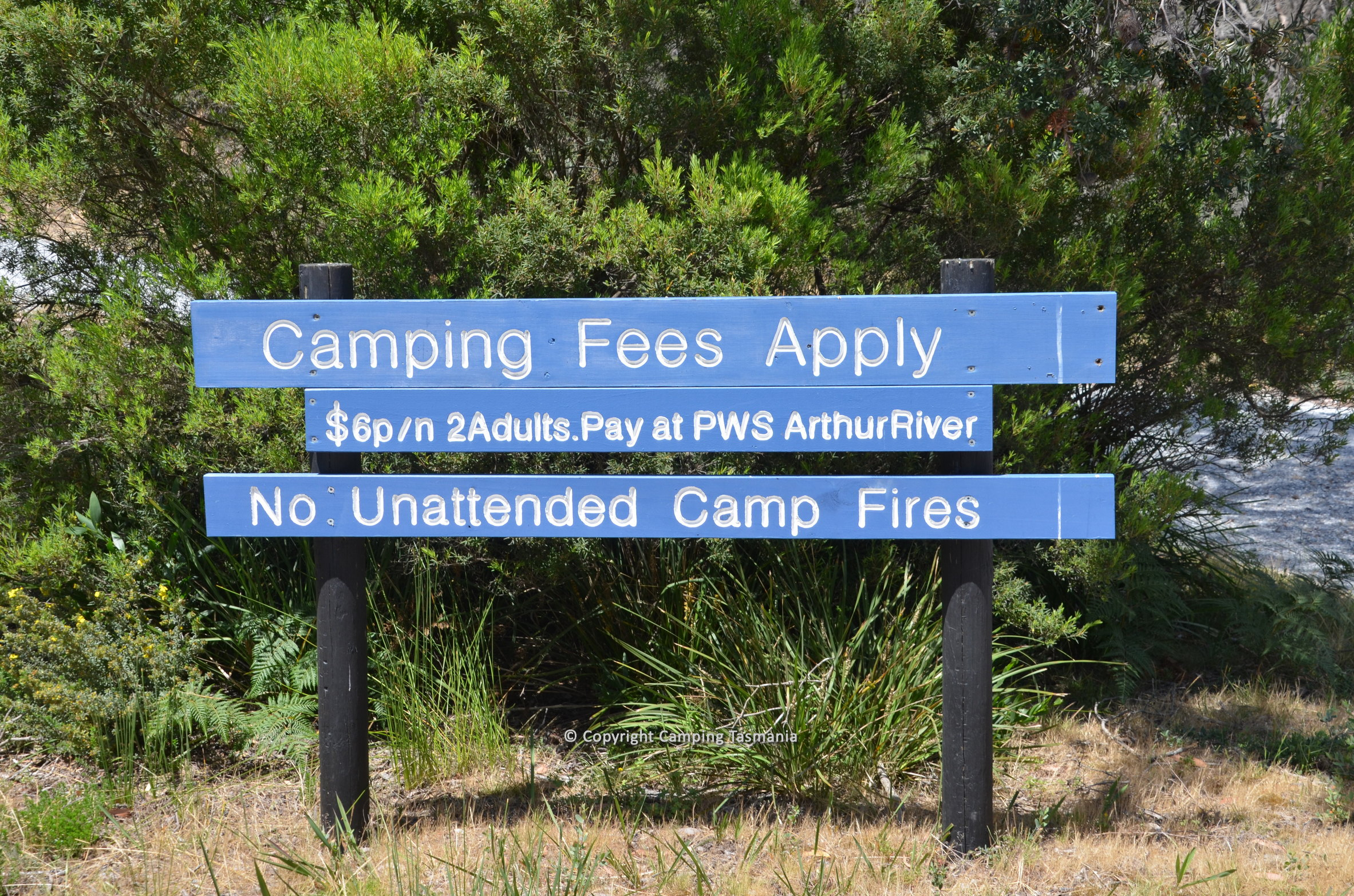 prickly wattle campground arthur river tasmania