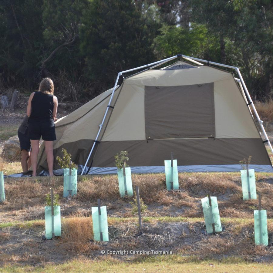 camping bridport caravan park