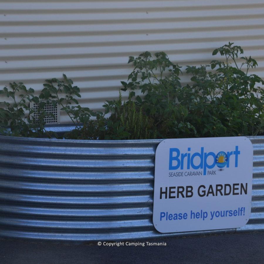 bridport-010.jpg