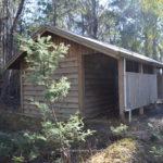camping lake sorell dago point tasmania tout fishing