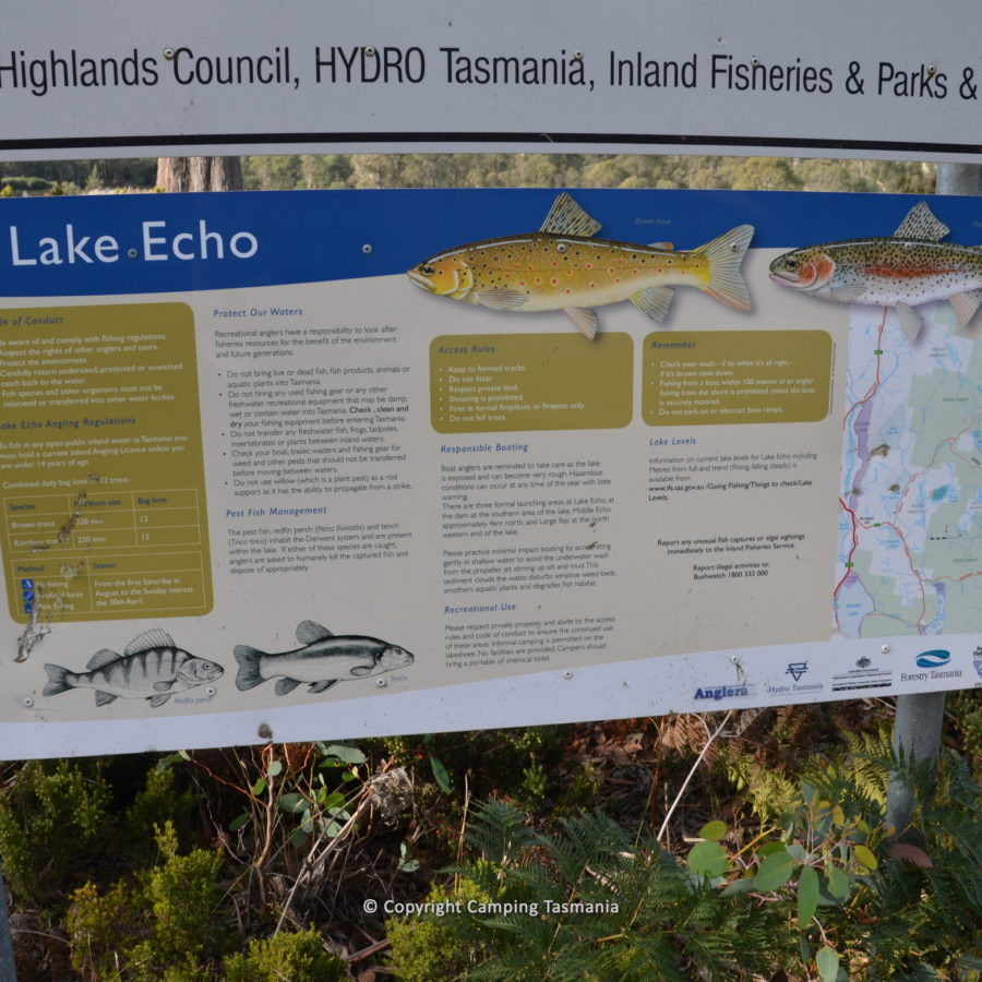 camping lake echo tasmania trout fishing