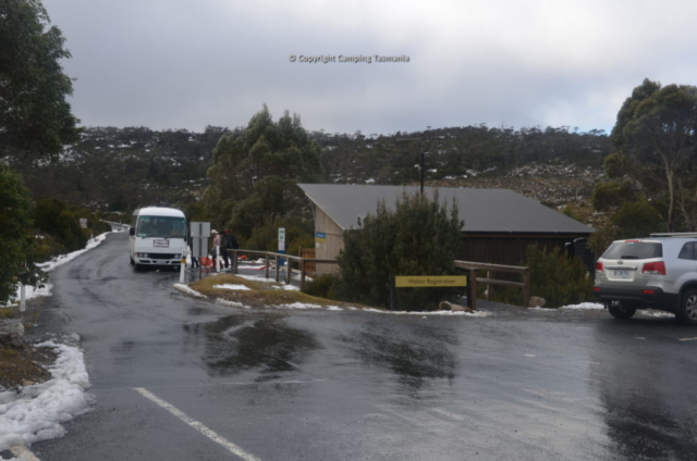 camping cradle mountain