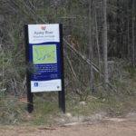 camping douglas apsley national park free