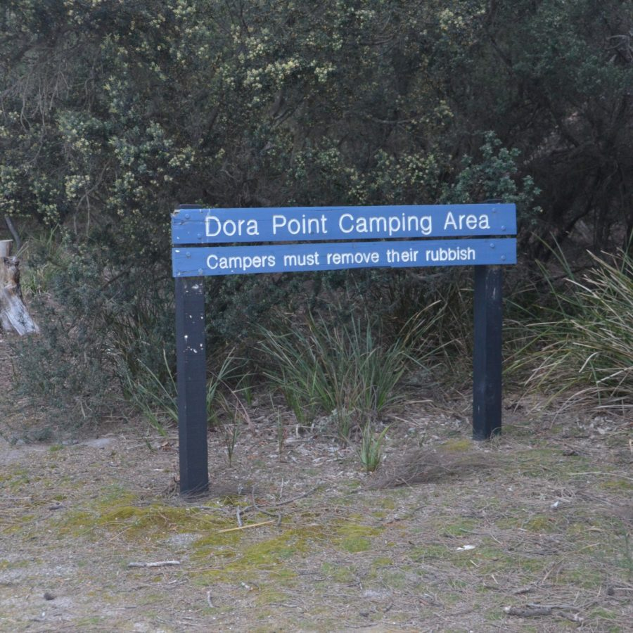 camping dora point bay of fires