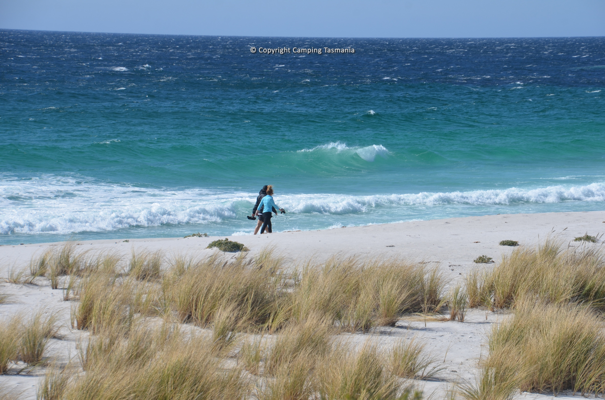 free camping swimcart beach bay of fires
