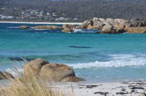 camping jeanneret beach bay of fires