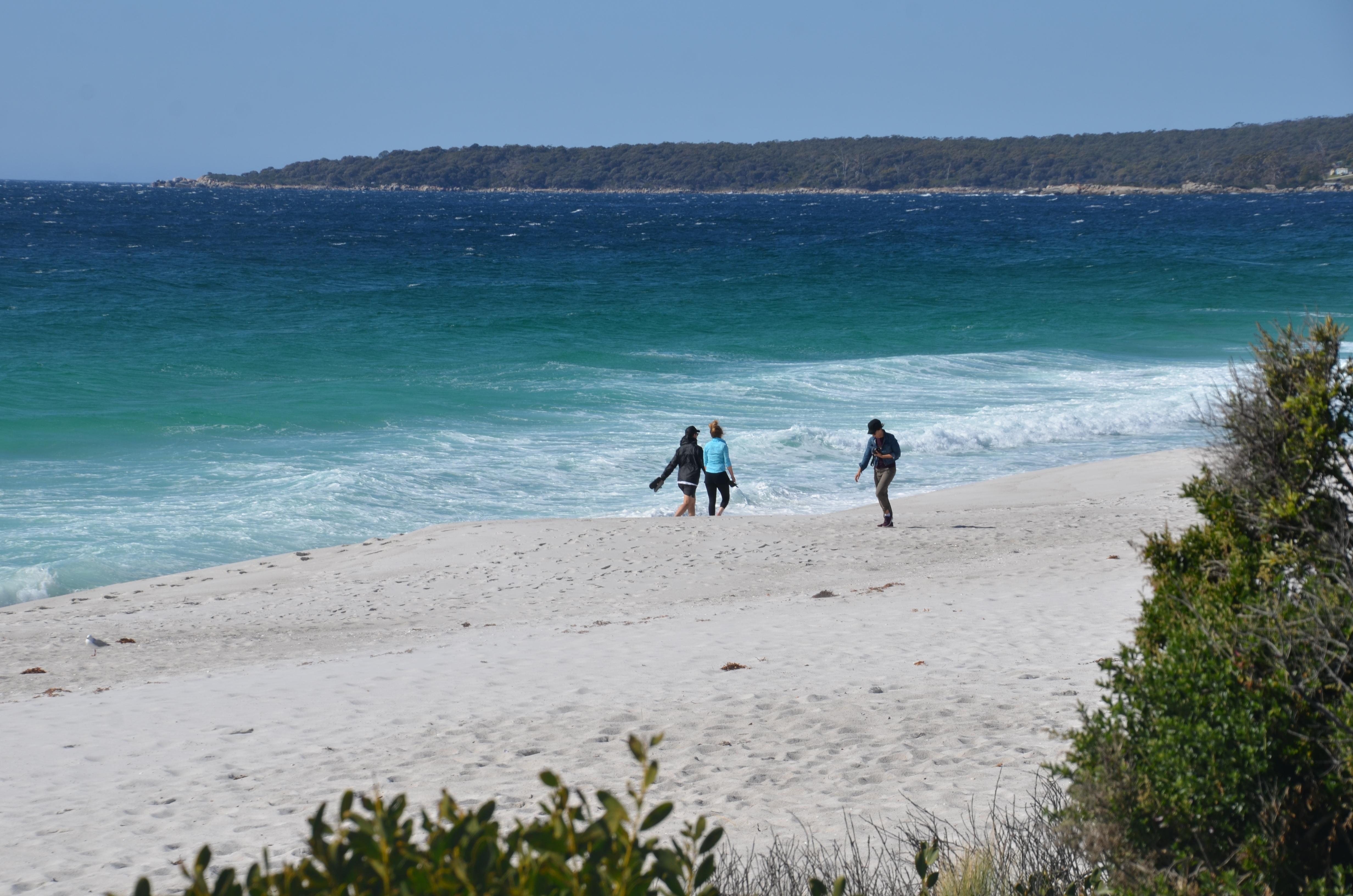 camping swimcart beach