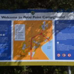 free camping petal point campground