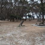 stumpys-1-010.jpg