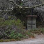 stumpys-1-011.jpg