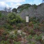 stumpys-3-005.jpg