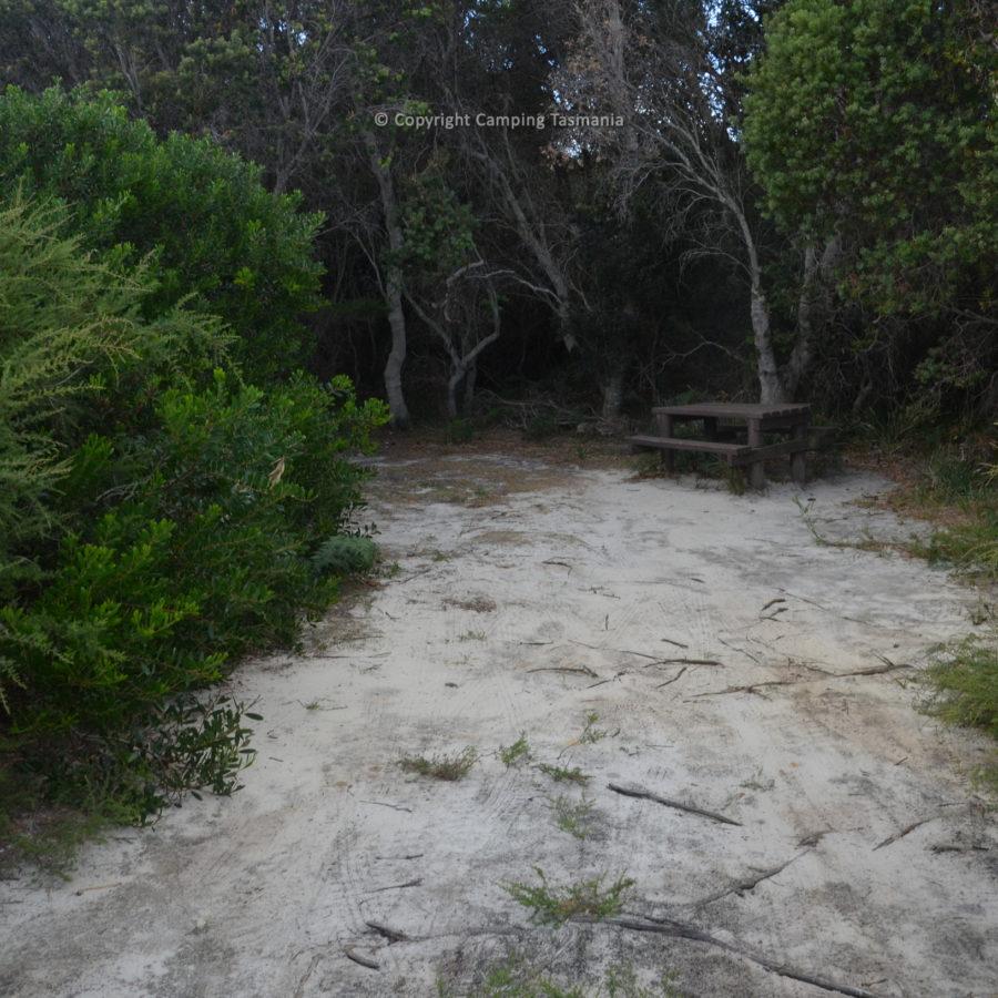 stumpys-4-006.jpg