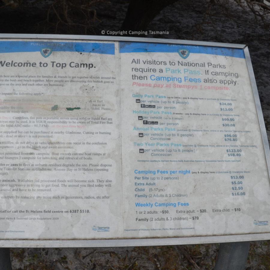 top-camp-008.jpg