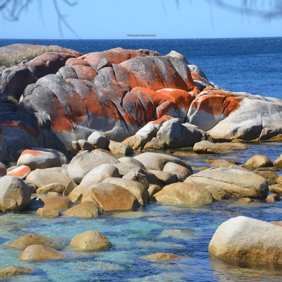 free camping sloop reef bay of fires
