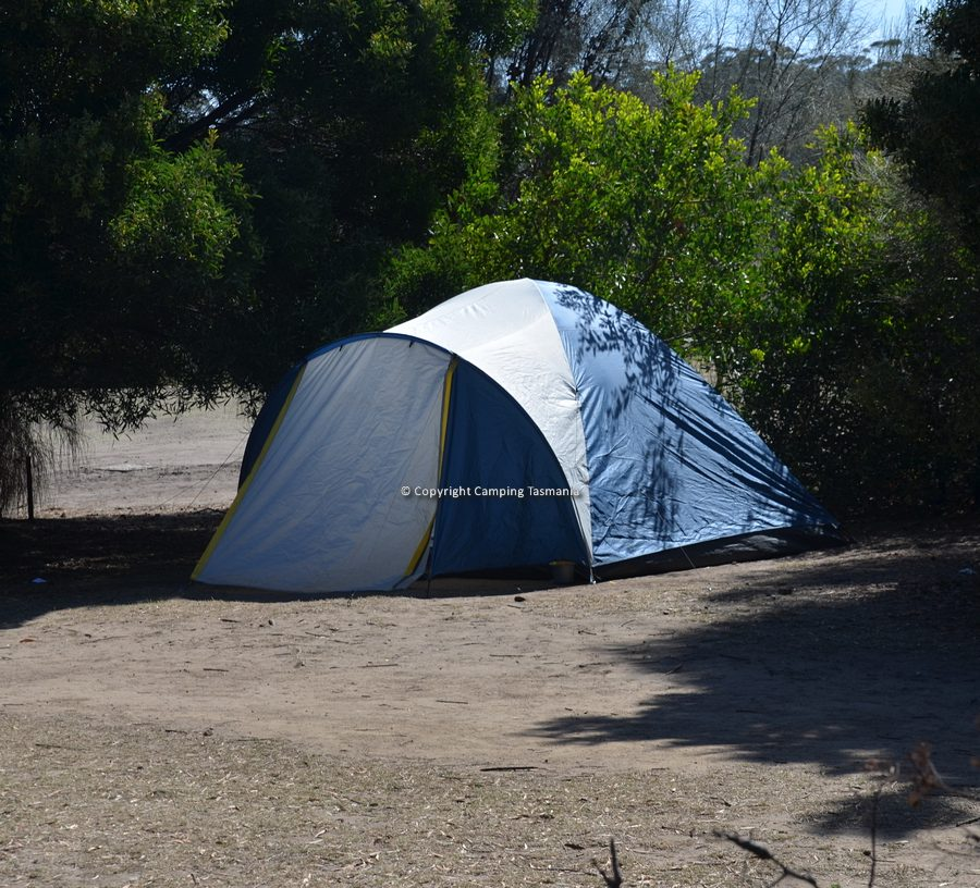 maria-island-camping-011.jpg