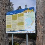 camping woods lake tasmania